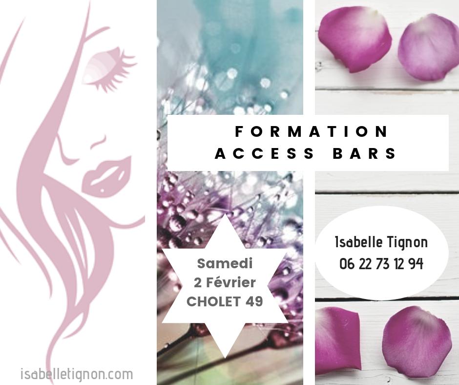 classe bars cholet  isabelle tignon 2-02-2019
